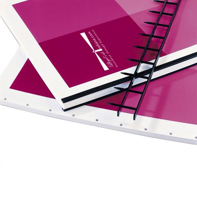 "11-PIN 2"" SecureBind™ Velo Strips in Multiple Colors"